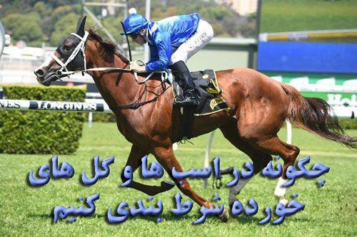 مسابقات اسب چگونه در اسب ها و تازی خورده شرط بندی کنیم